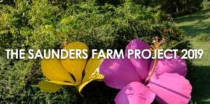 THE SAUNDERS FARM PROJECT 2019 @ Saunders Farm